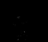 Logo 't Pleintje